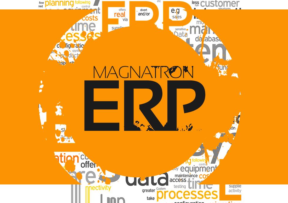 Magnatron ERP System Design